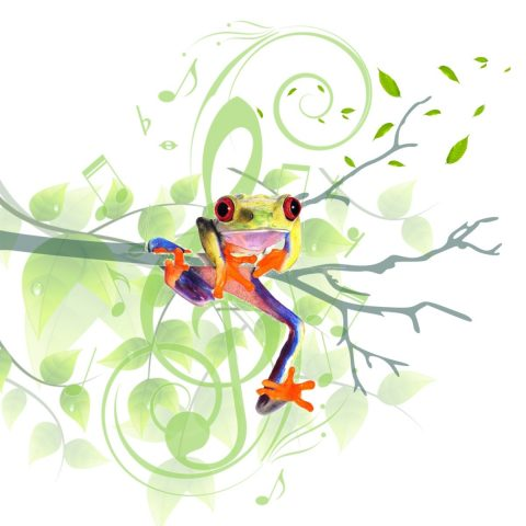 Tree Frog Music and Dance